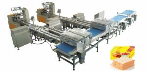 Wafer automated packing line for family pack